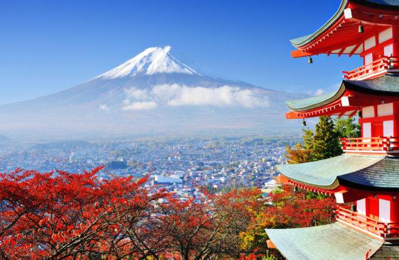 Amazing Tokyo!